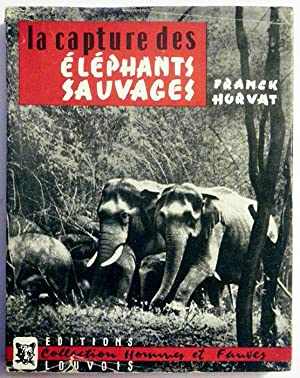 LA CAPTURE DES ELEPHANTS SAUVAGES.