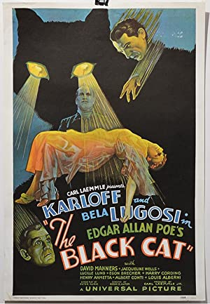 THE BLACK CAT. Bela LUGOSI Boris KARLOFF Horror Movie Poster, Lithograph reprint