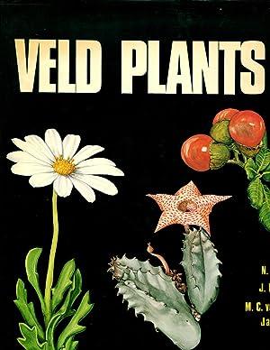 Veld plants of Southern Africa: Hobson, Nigel Kayser