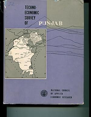 Techno-economic survey of Punjab