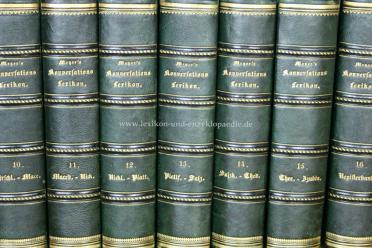 Meyers Konversations-Lexikon 2.Auflage, Halbleder, Band 14 (Salzkotten - Thedinghausen), 1867