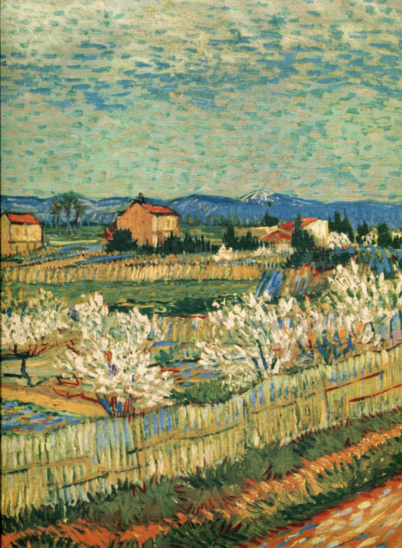 Van Gogh: Palma Bucarelli