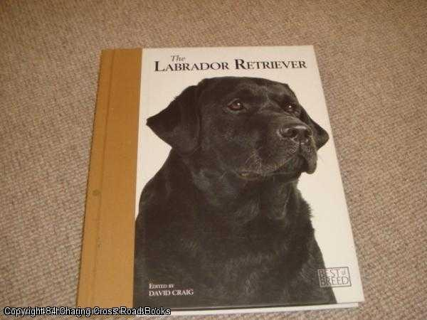 Labrador Retriever Book