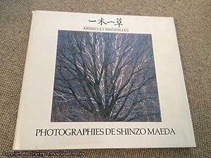 Arbres et Brindilles: Photographies de Shinzo Maeda: Maeda, Shinzo