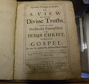 SPECULUM THEOLOGIAE IN CHRISTO: OR, A VIEW OF SOME DIVINE TRUTHS, WHICH ARE EITHER PRACTICALLY ...