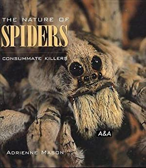 The Nature Of Spiders Consummate Killers