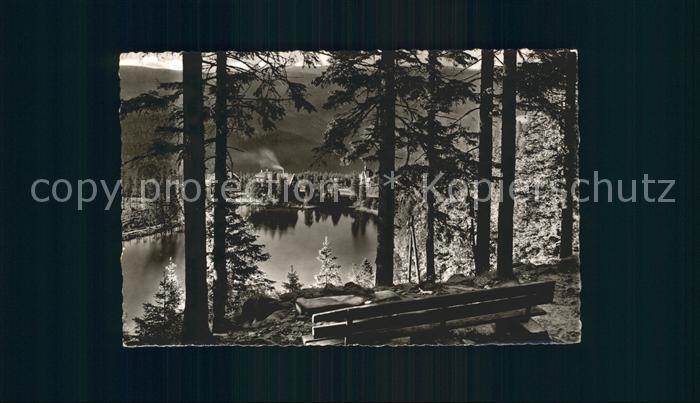Postkarte Carte Postale Mummelsee