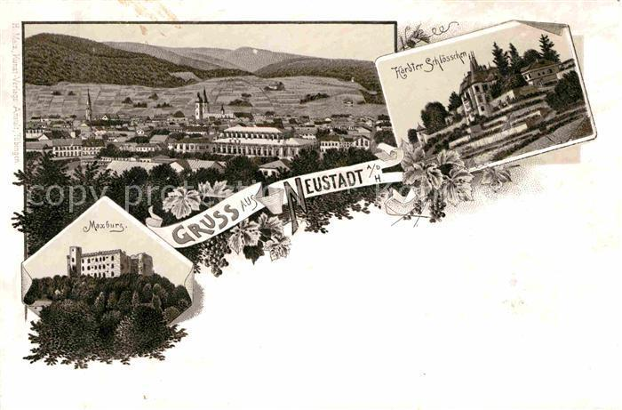 Antiques Neustadt An Der Weinstraße & Winzingen Art Neustadt An Der Haardt Karte 1906 Map
