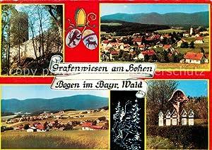 Postkarte Carte Postale Grafenwiesen Panorama Feldkreuze Burgruine