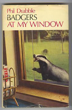 BADGERS AT MY WINDOW: Drabble, Phil