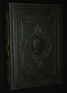 Goethe's Werfe: Goethe