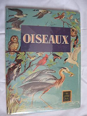 Oiseaux: Hussong C.