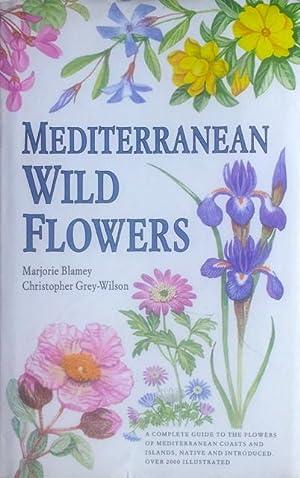 Mediterranean wild flowers: Blamey, M. &