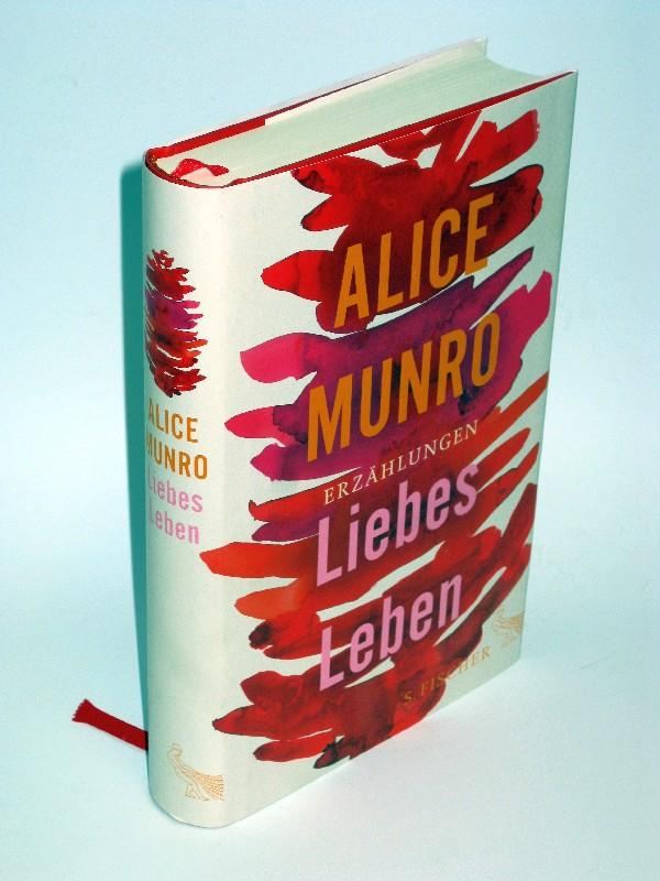 Liebes Leben 14 Erzählungen: Alice Munro
