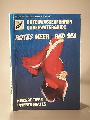 Unterwasserführer Rotes Meer. Niedere Tiere. Underwaterguide Red: Schmid, Peter und