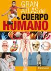 Gran atlas del cuerpo humano: Cassan Tachlitzky, Adolfo;