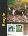 Beagle (Excellence): Elizabeth Lanyon