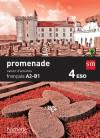 Français 4 ESO: Cahier d'activités. Promenade: Himber, Céline; Gallon, Fabienne;...