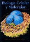 BIOLOGÍA CELULAR Y MOLECULAR - James . [et al.] Darnell