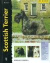 Scottish Terrier (Excellence): M. P. Lee