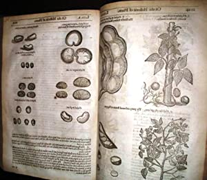 [HERBAL] THE HERBALL OR GENERALL HISTORIE OF PLANTES. GATHERED BY JOHN GERARDE OF LONDON MASTER I...