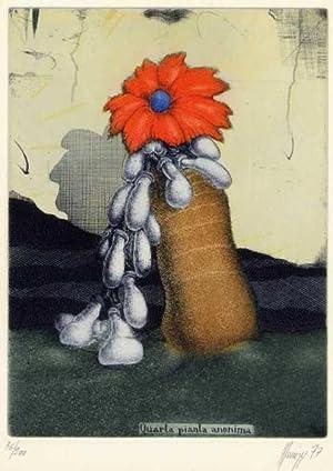 Quarta pianta anonima.: MINUZZI, Maurilio geboren 1939,