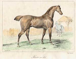 Hunter en 1814.: PFERD.