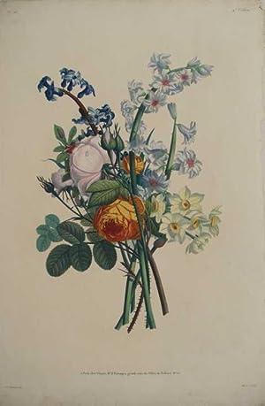 Bouquet mit Rosen, Hyazinthen, Scilla und Tarcetten.: BOUQUET.