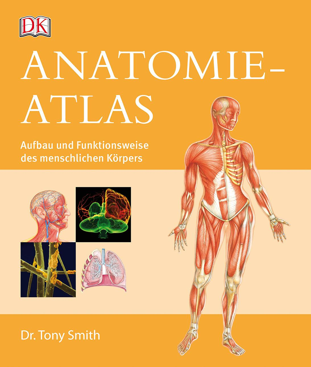 Anatomie Atlas Aufbau Funktionsweise Menschlichen Körpers by Tony ...
