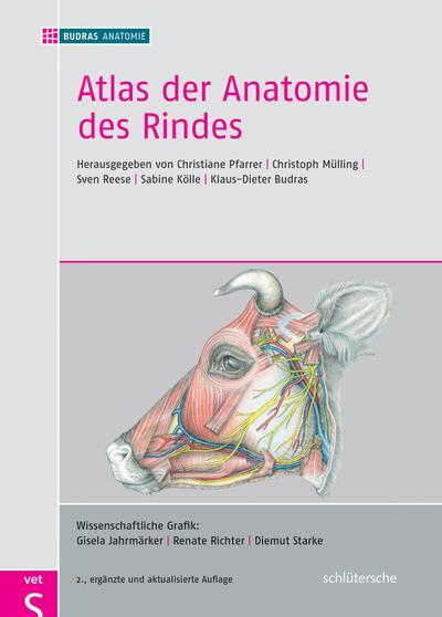 Schön Buch Anatomie Und Physiologie Zeitgenössisch - Menschliche ...