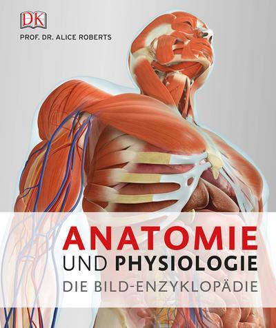 Ungewöhnlich Grundlagen Der Menschlichen Anatomie Und Physiologie 8 ...