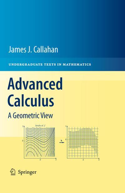 Advanced Calculus : A Geometric View - James Callahan