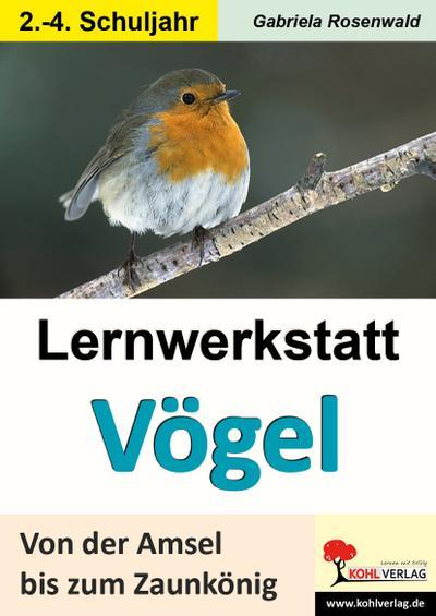 Lernwerkstatt Vögel Von der Amsel bis zum Zaunkönig : Ein Leben aus der Vogelperspektive - Gabriela Rosenwald