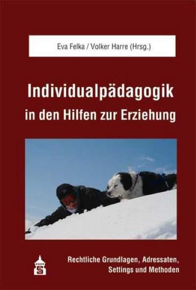 Individualpädagogik in den Hilfen zur Erziehung : Rechtliche Grundlagen, Adressaten, Settings und Methoden - Eva Felka