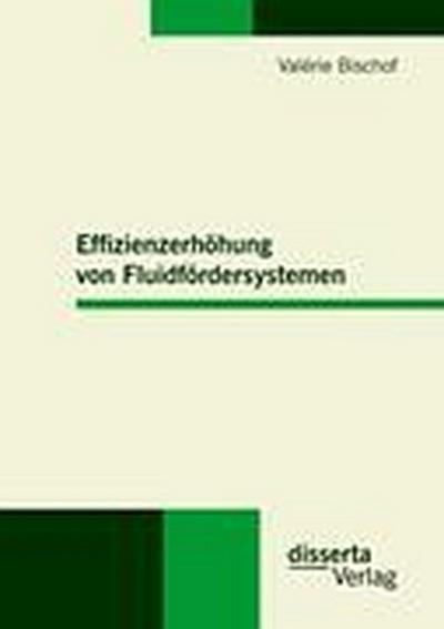 Effizienzerhöhung von Fluidfördersystemen - Valérie Bischof