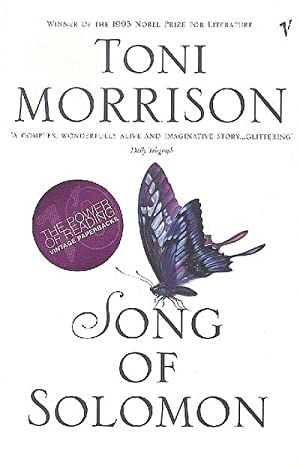 an analysis of song of solomon a novel by toni morrison Theme analysis of toni morrison's song of solomon - solomon essay example song of solomon, a novel written by toni morrison.