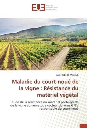 Maladie du court-noué de la vigne : Abdellatif EL Msayryb