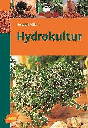 Pflanzschalen abebooks for Hydrokultur pflanzen versand