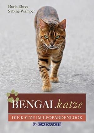 Bengalkatze : Die Katze im Leopardenlook: Boris Ehret