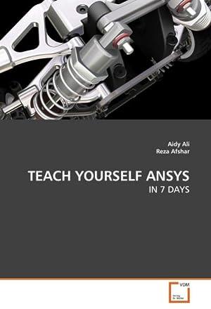 TEACH YOURSELF ANSYS : IN 7 DAYS: Aidy Ali