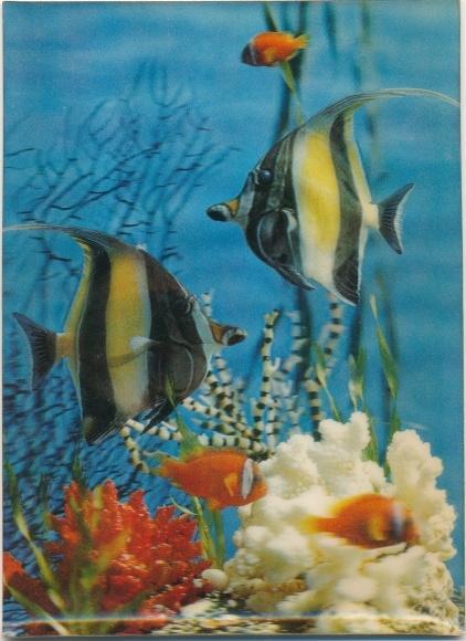 Fische in der Ozeandatierung