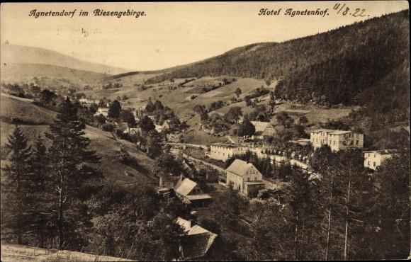 Ansichtskarte / Postkarte Agnetendorf Hirschberg Schlesien, Hotel
