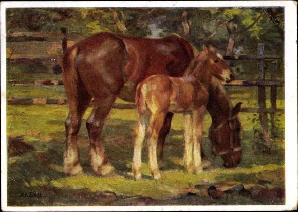 Künstler Ansichtskarte / Postkarte Stahl, Franz Xaver, Fohlen und Stute, Pferde