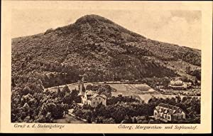 Ansichtskarte / Postkarte Königswinter im Rhein Sieg