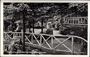 Ansichtskarte / Postkarte Sachsenberg Georgenthal Klingenthal, Radiumquelle