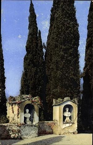 Ansichtskarte / Postkarte San Vigilio Gardasee, Cypressenstudie,