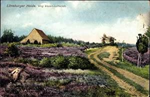 Ansichtskarte / Postkarte Lutterloh Südheide, Lüneburger Heide,