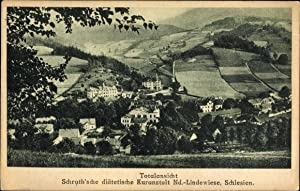 Ansichtskarte / Postkarte Lipová Bad Lindewiese Reg.