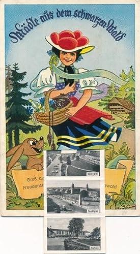 Leporello Ansichtskarte / Postkarte Freudenstadt im Nordschwarzwald,