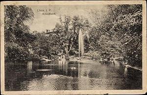 Ansichtskarte / Postkarte Lissa Leszno Posen, Schlossteich,